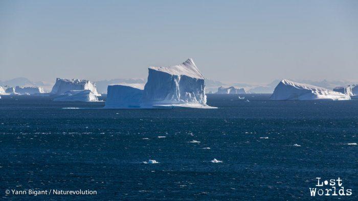 La mer commence à moutonner à l'approche du coup de vent, ce qui rend ardue la recherche de signes de cétacés.